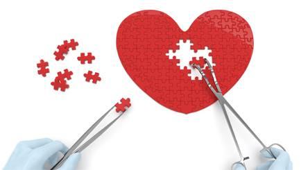 Especialidade Médica: Cardiovascular