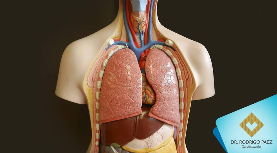 Edema Pulmonar Agudo e suas relações com doenças do coração.